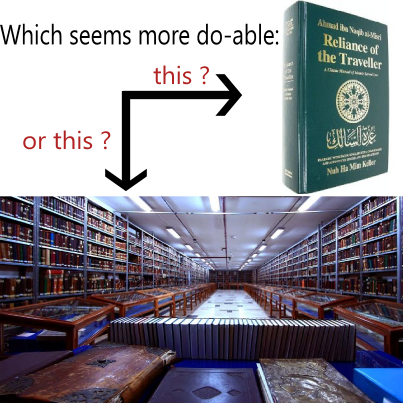 Book or Library
